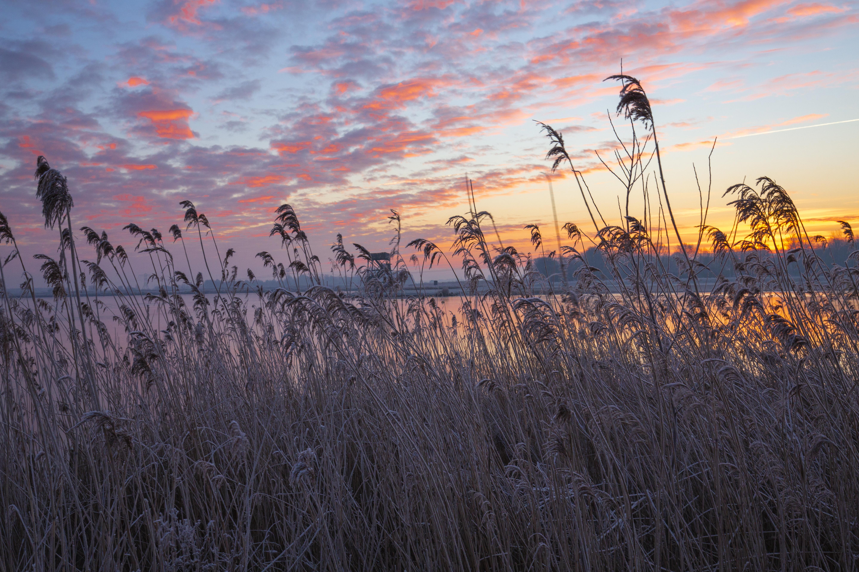 Winterse fotografie van het mooie Meerstad