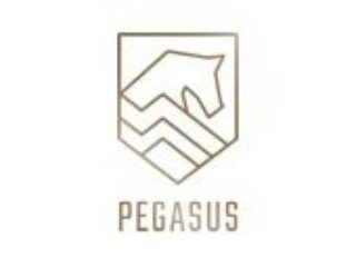 Pegasus Vastgoed